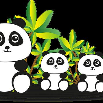 panda-2018774_640